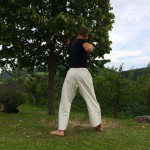 Dynamic Core 1-07 - Single Arm Power Pull