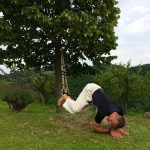 Dynamic Core 1-12 - Suspended Oblique Crunch to a Pike